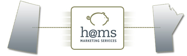 hams marketing services
